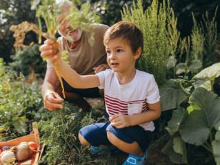 Natureza é saúde na infância