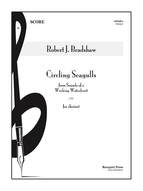 CIRCLING SEAGULLS (Clarinet)