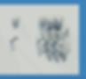 Screenshot 2020-03-30 at 19.39.56.png