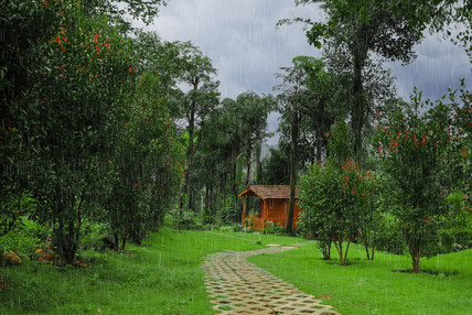 Resorts in Sakleshpur Wild Valley 7.jpg