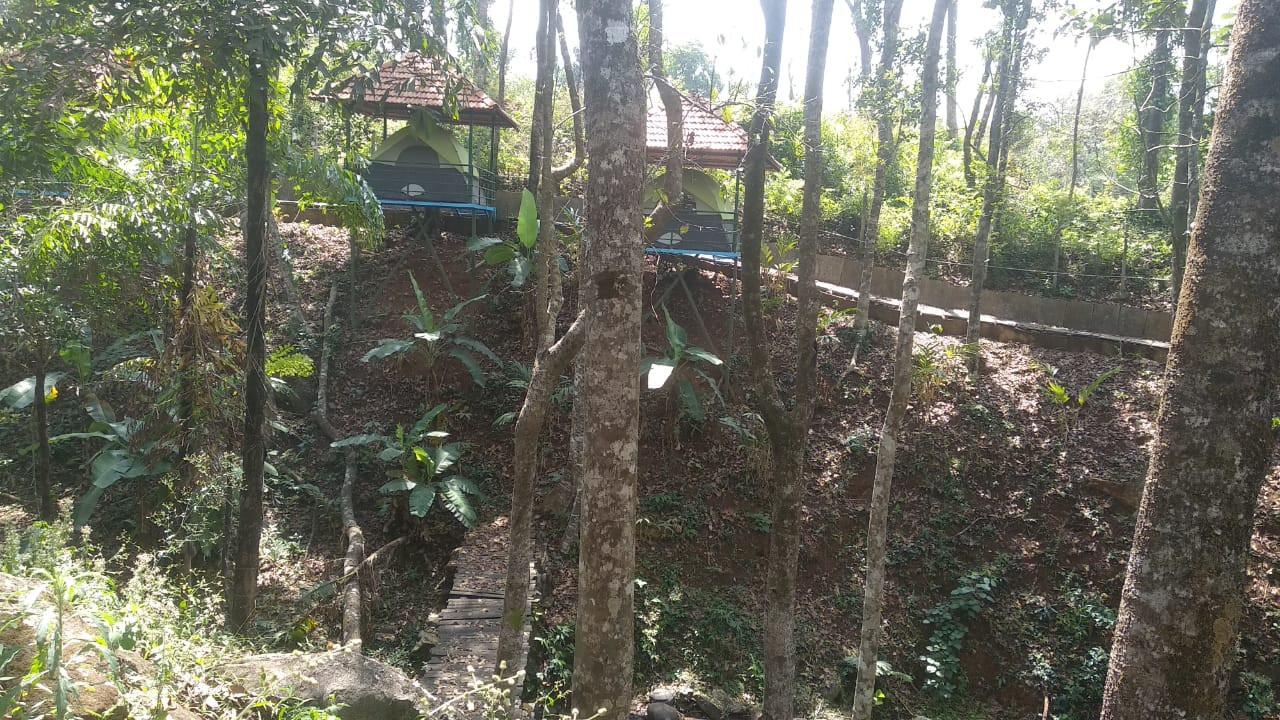 Budget Resorts in Sakleshpur 13