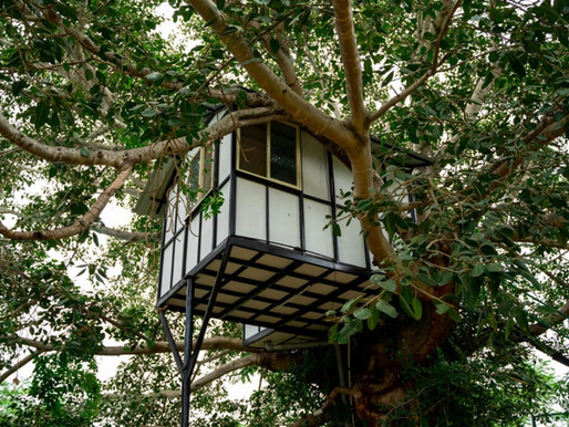 Tree house stay near Bangalore