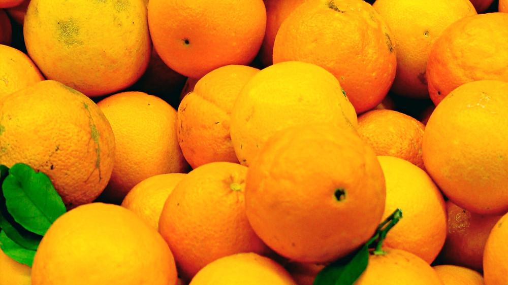 20 Best House Plants - Mandarin Oranges
