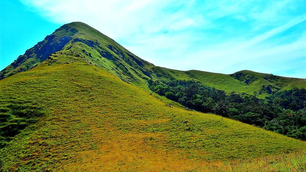 Sakleshpur Places to Visit - Jenukal Gudda