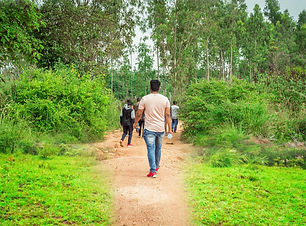 Plantation Walk - Homestay in Sakleshpur.jpeg