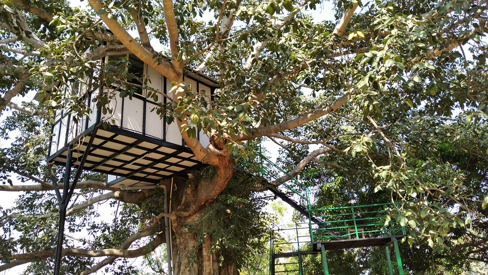 Resort in Bangalore For Night Stay - Tree House