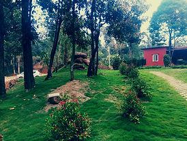 Homestays in Sakleshpur