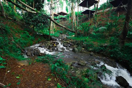Resorts in Sakleshpur Wild Valley 10.jpg