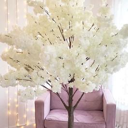 Luxury Blossom Trees