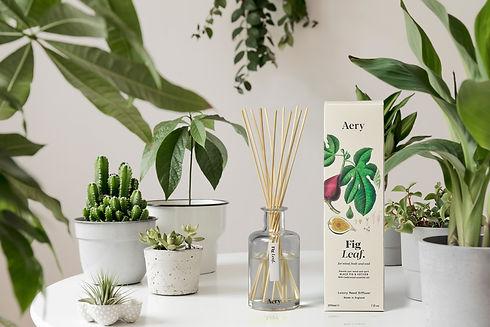 AE0022_Fig Diffuser_Botanical_Plants.jpg