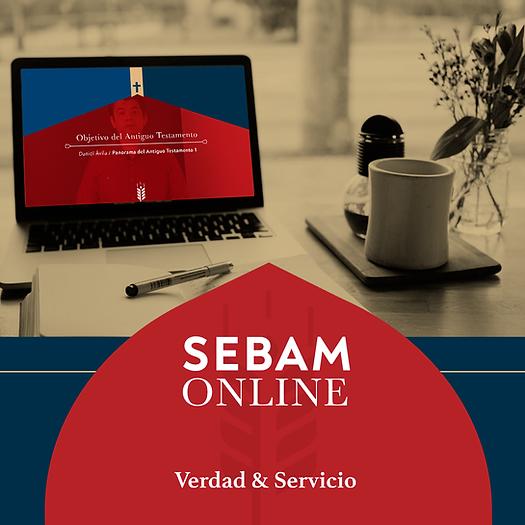 SEBAM-ONLINE.png