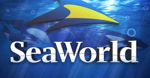 image about Seaworld San Antonio Coupons Printable named Cost-free Admission toward Sea World wide San Antonio for Texas Academics