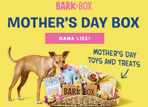 This Mother's Day get your pups and Mom the gift that will make memories with BarkBox!