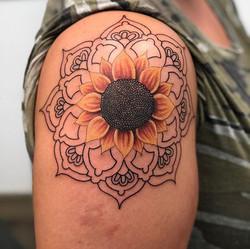 handrawn mandala sunflower combo