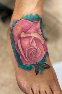 Color rose on foot