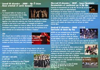 Spectacle de Danse Orientale / Festival EVOLUTION