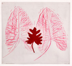Elephant Ear Leaf with Rhododendron
