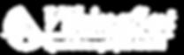 VikingSat_logo 2018 VIT-01.png