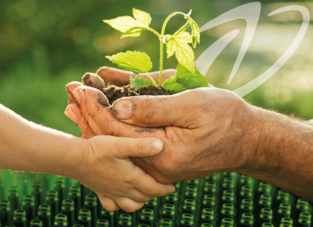 Lundstams och hållbarhet