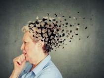 Orsaken till minnesrubbningar ligger i mikrocirkulationen