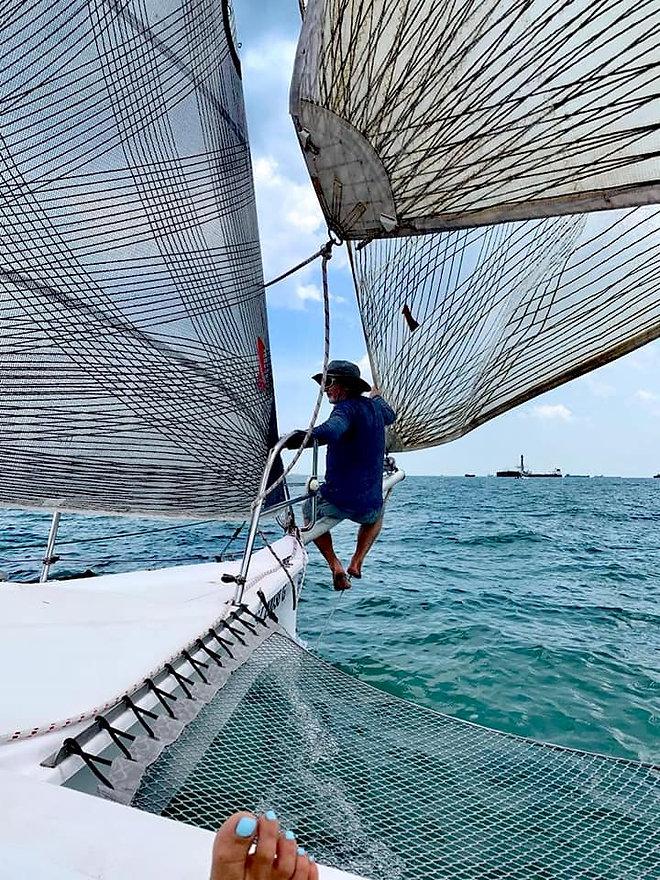 one sails wings.jpg