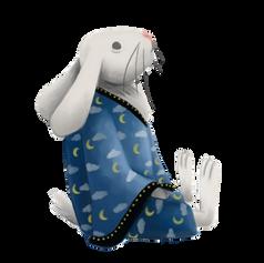 Rabbit Spot Art