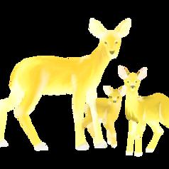 Diamond Deer Spot Art