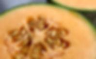 ドラッグストア,旬の果物