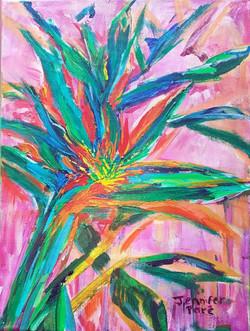 Pink Strelitzia - SOLD