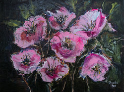 Popping Pink Poppies