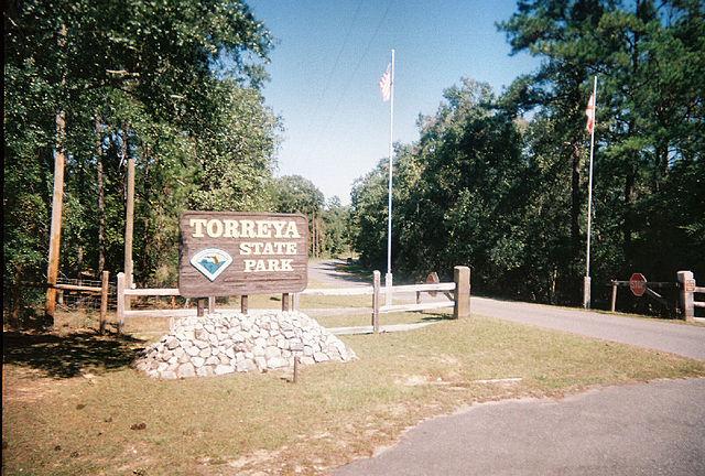 640px-Torreyapark01