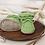 Thumbnail: BabySchühchen •pistacchio& bambus• (Sohlenlänge 10cm)