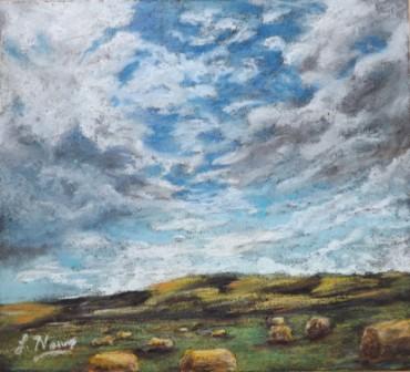grassy summer farm scene