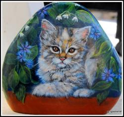 pet portraits on rock kitten