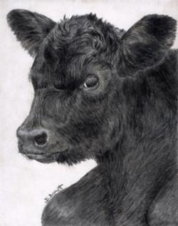 Blk Calf on Gray Suede 2 web