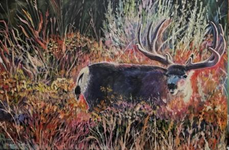 wildlife paintings,original deer art