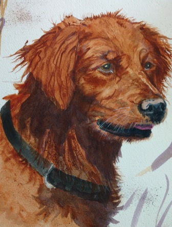 red dog painting by Susie Barnett