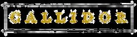 Logo%20Callidor_edited.png