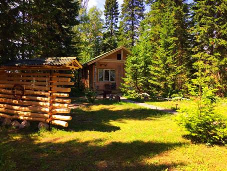 Лесной дом подключен к wi-fi