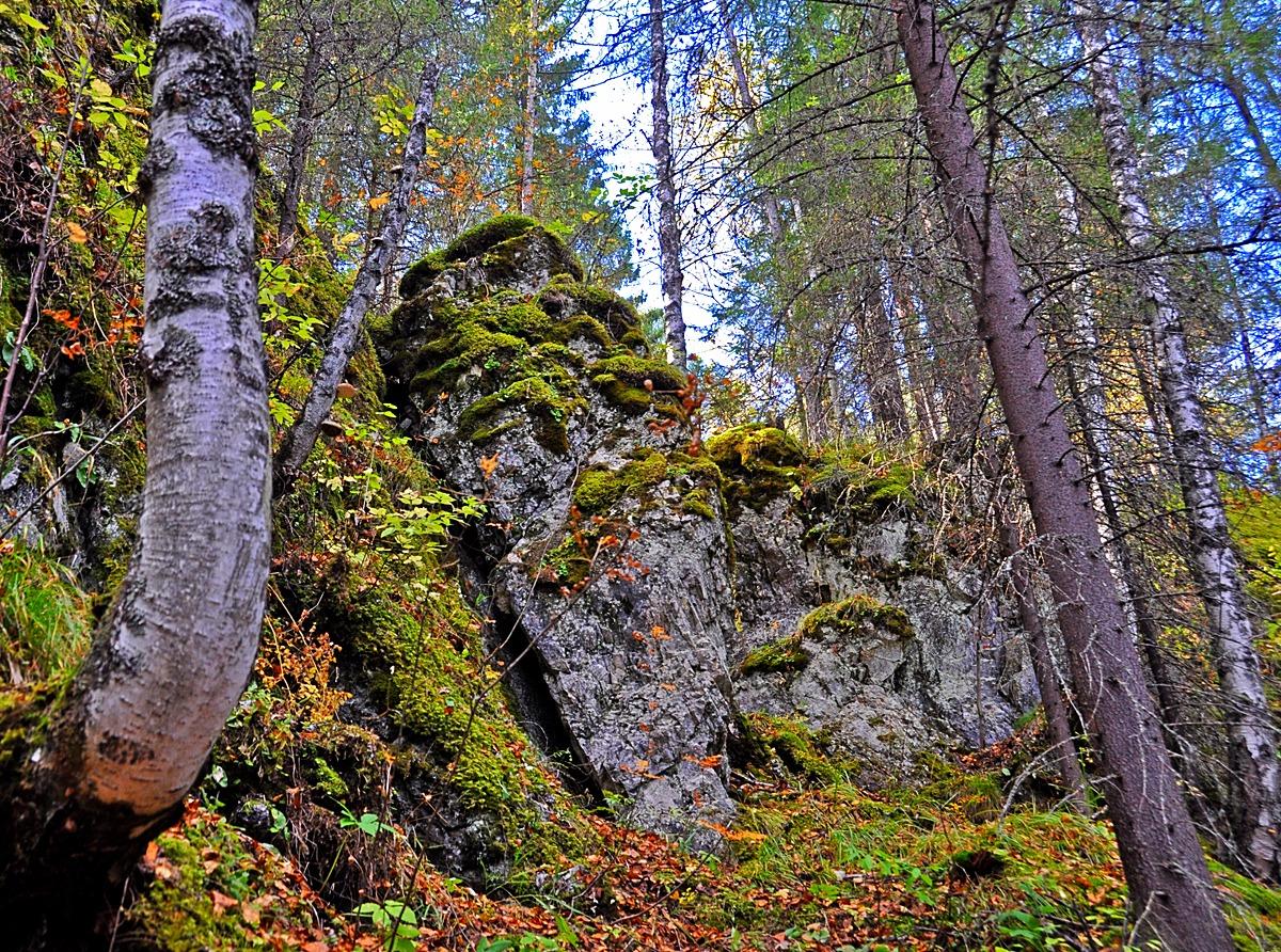 секретные маршруты природного парка