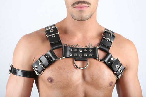 Bulldog(Adam) Harness
