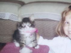 En la mémoire d'un chat qui allait tout changé !