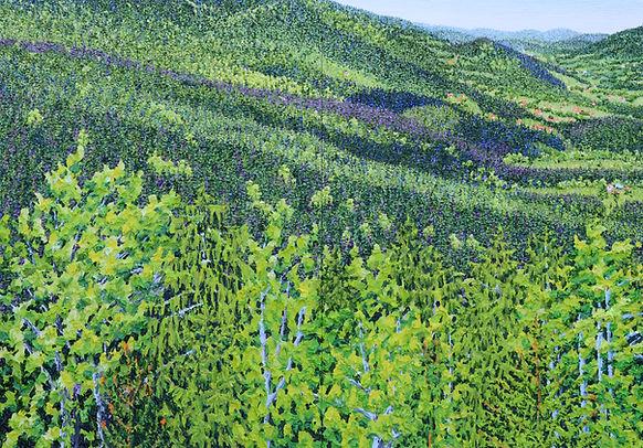 42 Bayerischer 15 Wald Oel auf Leinwand