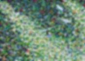 38_Fürth_12_Oel_auf_Leinwand_50x70cm.jpg