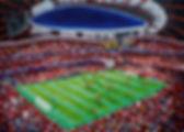FC_Bayern_München_50x70cm_Öl_auf_Leinwan