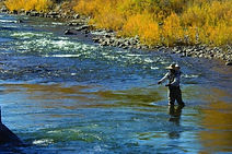 102405flyfishingDolores River Colorado01