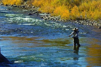 102405flyfishingDolores River Colorado01