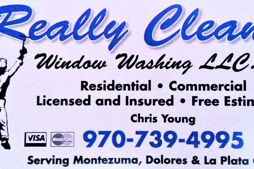 Really Clean Window Washing