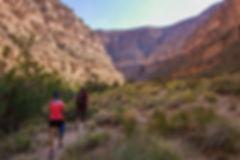 Honaker_Trail_opt.jpg