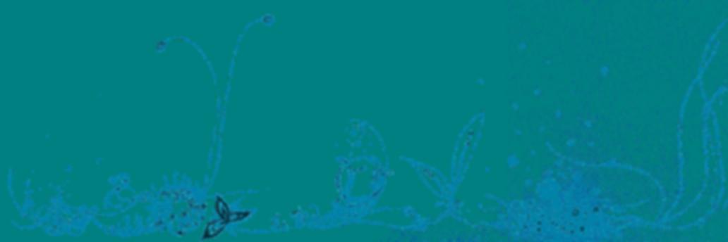 黎明背景1110.png
